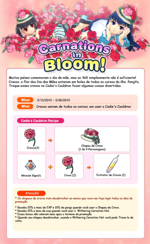 https://ultimatepangya.files.wordpress.com/2010/05/carnations-in-bloom.jpg